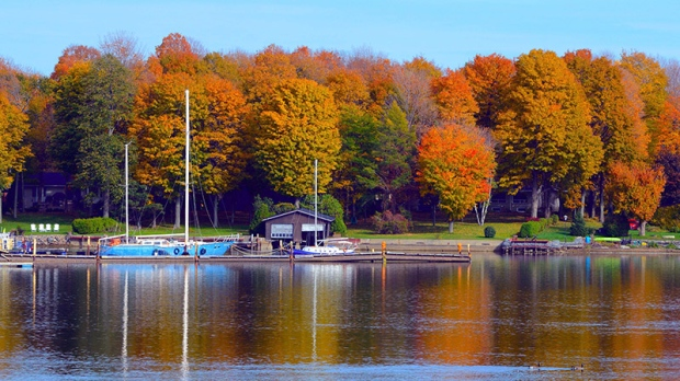 Fall colours at the marina in Long Sault, Ontario.  (Viewer photo submitted by: Calvin Hanson)