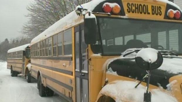 School Closures Toronto: School Bus Cancellations And School Closures For Ottawa