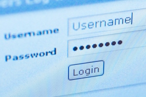 An online password is shown in this stock photo. (Valerie Potapova/Shutterstock.com)