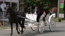 The Buggy Man of Westport - Dale Lyons