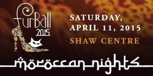 FurBall Gala 2015