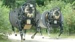 CTV News Channel: Debate on 'killer robots'