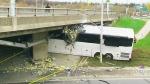 CTV Toronto: Bus wedged under bridge