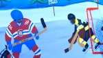 Child's painting of Subban brothers sells for $11,