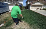 Cy Bodden from the San Diego company LawnLift sprays their Grass Paint product to enhance the green color as water restrictions take their toll during a severe drought in San Diego and California on May 12, 2015. (AFP/File / Mark Ralston)