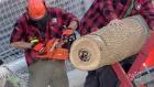 CTV Ottawa: Redblacks in Winnipeg