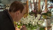 Procedure helps Ottawa man regain sense of smell,