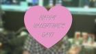 Valentine's Day at 87 George Street