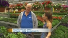 CTV Morning Live Ritchie Feed and Seed 1