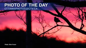 Glen Fraser/CTV Viewer