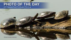 Dorothy Berthelet/CTV Viewer