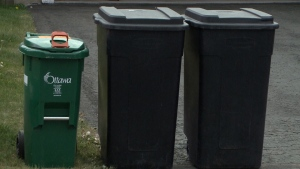 An Ottawa woman is calling for compromise after the City of Ottawa threatened to fine her for using oversized recycling bins.