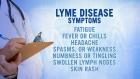 Seeking strategies to fight Lyme disease