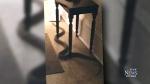 CTV Ottawa: Snake found in woman's apartment