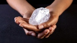 CTV News Channel: Mega diamond up for auction