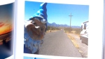 'Kidnapped' gnome returns home after whirlwind tri