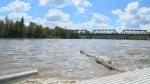 North Saskatchewan River rising