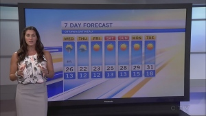 CTV Morning Live Weather August 31