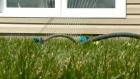 CTV Ottawa: Small lawn prompts large water bill