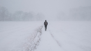 A pedestrian walks through whiteout conditions on the Halifax Common during a winter storm in Halifax on Monday, February 8, 2016. (Darren Calabrese/The Canadian Press)