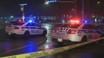CTV Ottawa: Pedestrian struck and killed