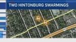 CTV Ottawa: Two Hintonburg swarmings over weekend