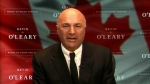 CTV Ottawa: O'Leary runs for leadership