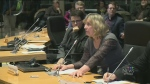 CTV Ottawa: Heated debate about library site