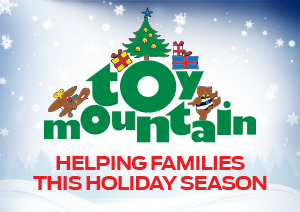 Toy Mountain 2017