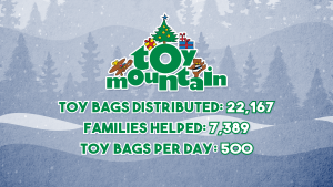 Toy Mountain 2020 Final Totals