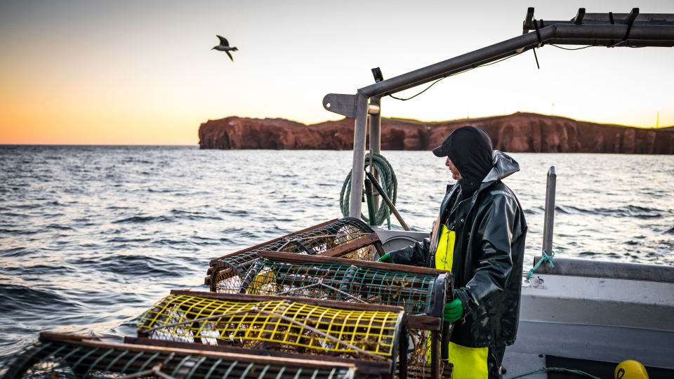 Lobster fishing in the Maritimes
