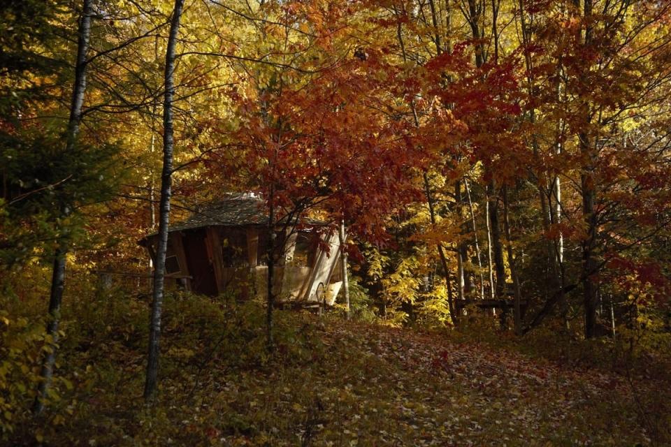 Magical Wooden Yurt