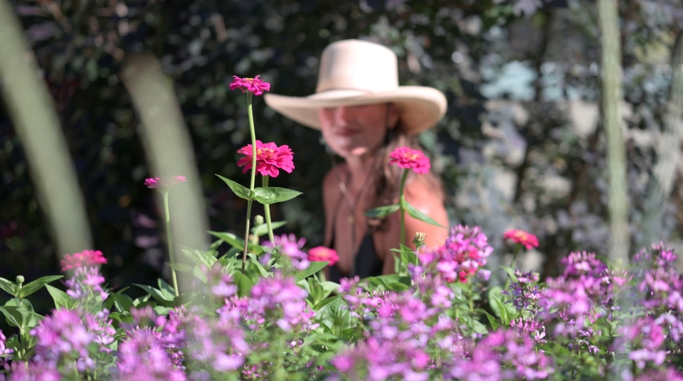 Enjoying vibrant annuals