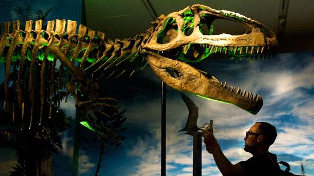 ROM dinosaur